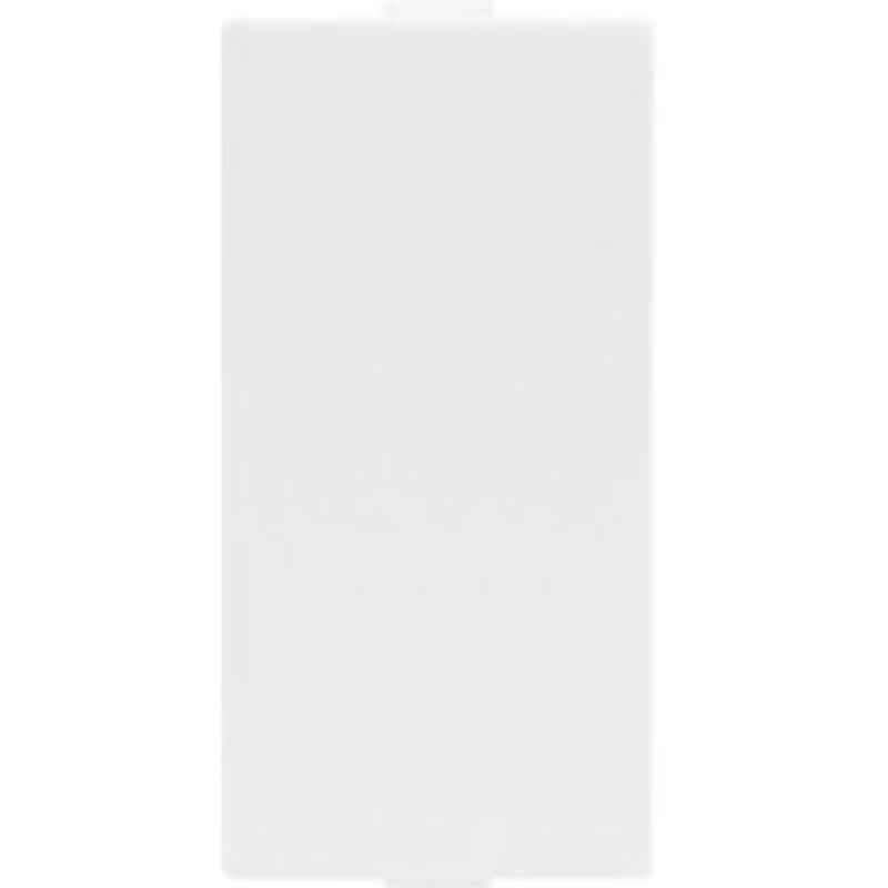 Indoasian 1M Blank Plate, 800151