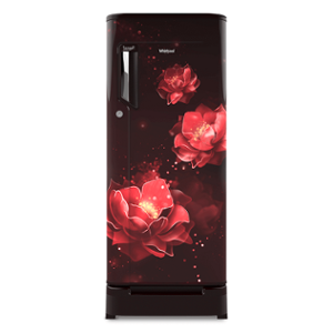 Whirpool Icemagic Powercool 200L Wine Abyss Single Door Refrigerator with Pedestal