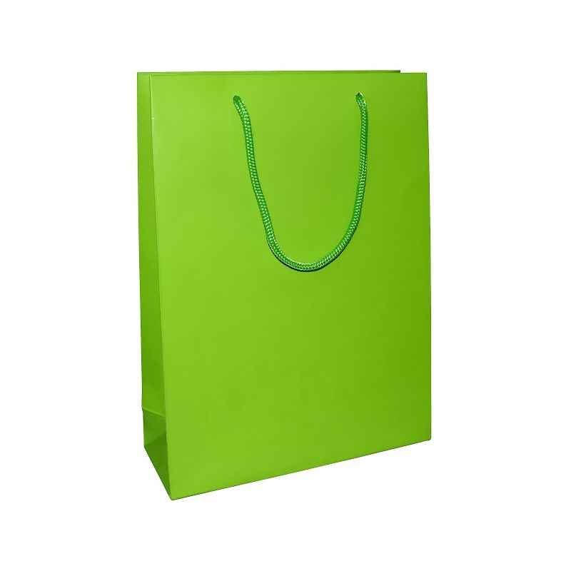 Aspen Matte Laminated Green Paper Bag, AC-024-004 (Pack of 96)