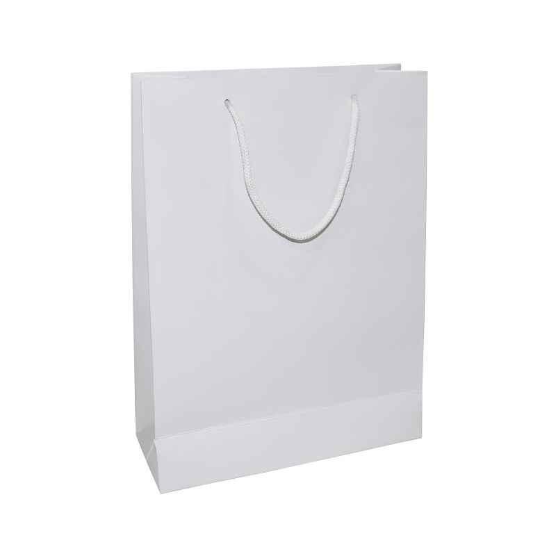 Aspen Matte Laminated White Paper Bag, AC-033-020 (Pack of 96)