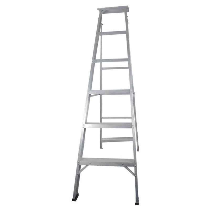 Brancley Silver Dual Purpose Ladder, BDPL-06
