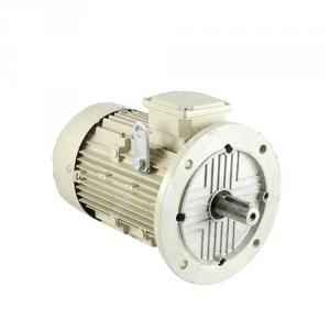 Bharat Bijlee 3HP 2 Pole AC Induction Motor, 2H09L273