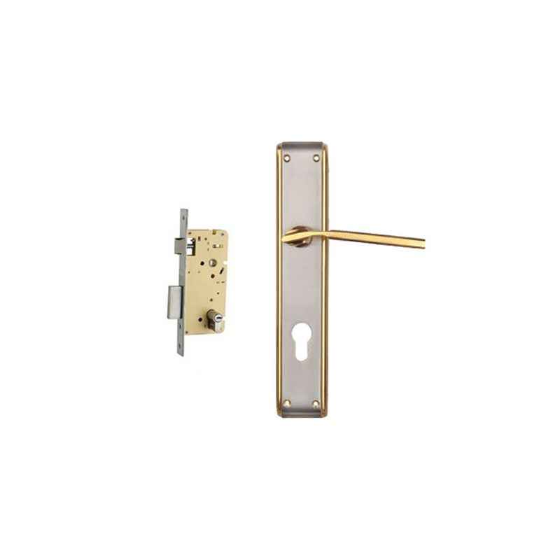 Plaza Fabia Gold Silver Finish Handle with 250mm Pin Cylinder Mortice Lock & 3 Keys