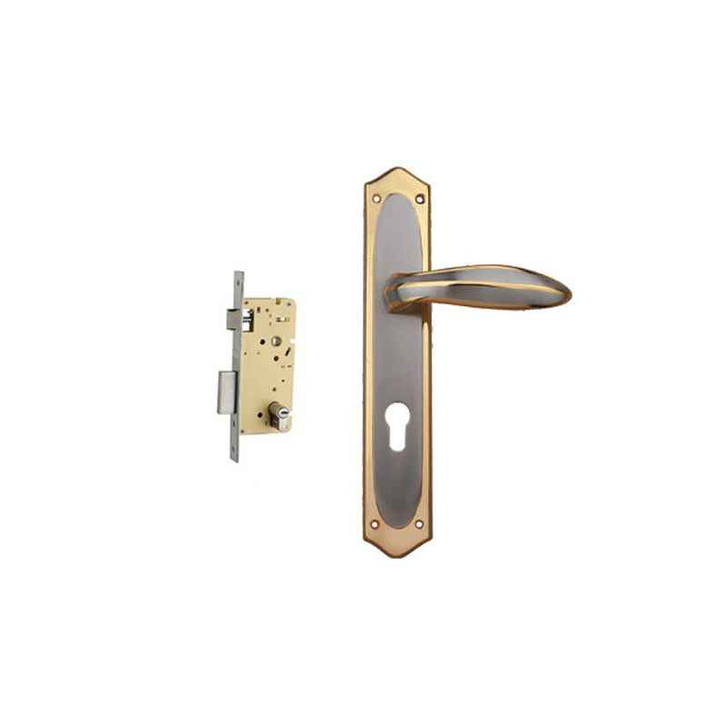 Plaza Ria Gold Silver Finish Handle with 250mm Pin Cylinder Mortice Lock & 3 Keys