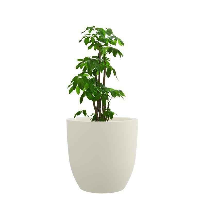 Yuccabe Italia 12 Inch Cream White P Cup Planter