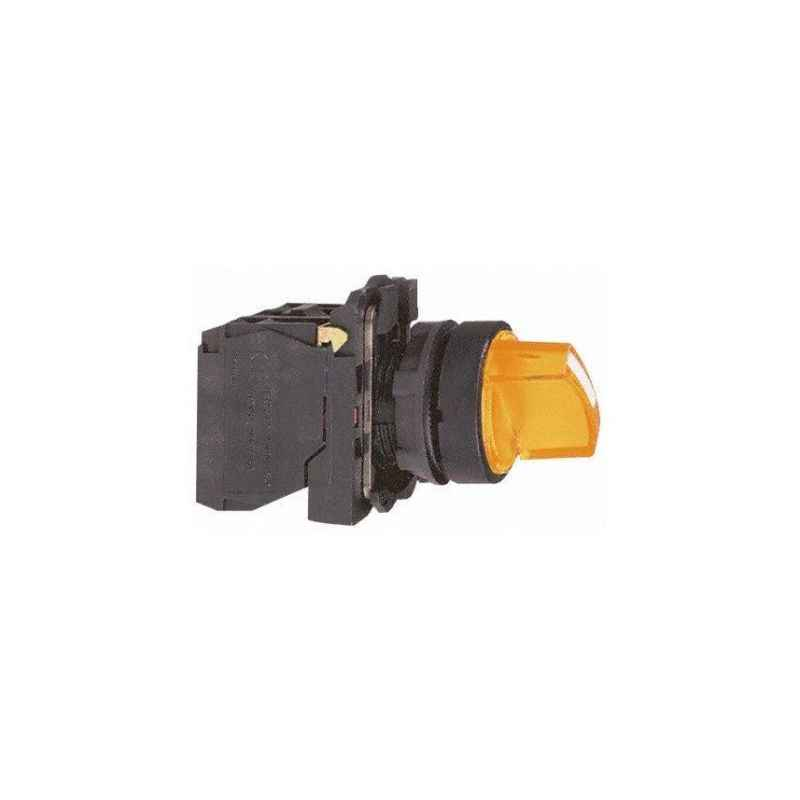 Schneider 24V Green Illuminated Selector Switch, XB5AK123B1N