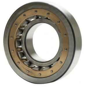 NBC NJ304E Cylindrical Roller Bearing, 20x52x15 mm