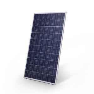 PowerHouse 250W 24V Polycrystalline Solar Panel, PWHP250