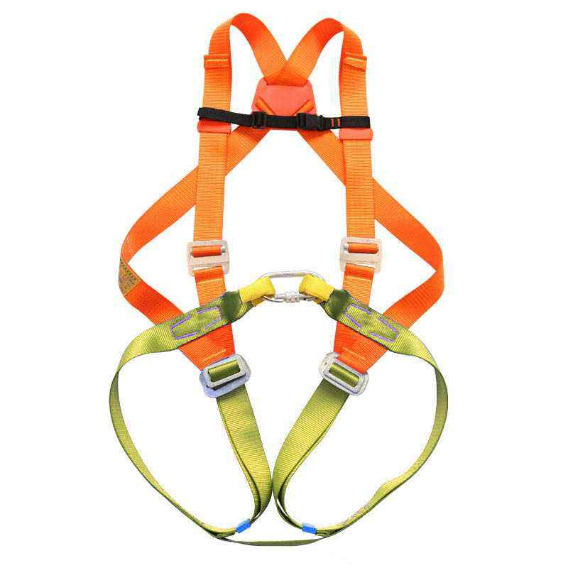 Alko Plus Double Rope Carabine Hook Full Body Harness, APS-401 (Pack of 2)