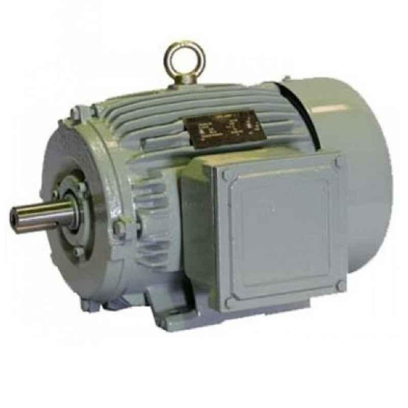 Crompton Greaves 2HP Single Phase 4 Pole AC Induction Motor, GF7010