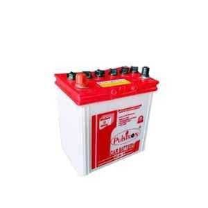 Pulstron 12V 35Ah Car Battery NS-40P (Dry)