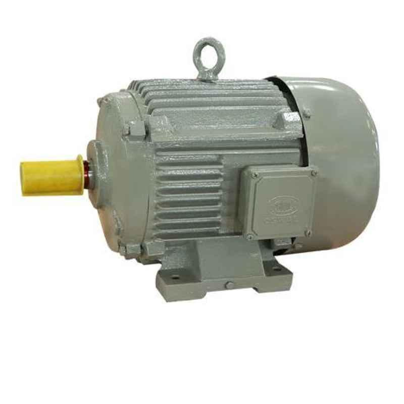 Oswal 3HP 1440rpm Single Phase Induction Electric Motor, OM-8-(CI)ATCHK