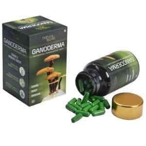 Nature Sure 60 Pcs Ganoderma Lingzhi Reishi Mushroom Capsules for Stamina