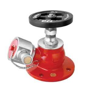 Omex 63mm Stainless Steel Single Way Hydrant Valve