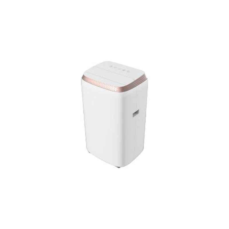 Lloyd 1 Ton Portable AC, LP12B01TP