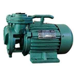 CRI Dino SP50 0.5HP V-Type Single Phase Self Priming Monoset Pump