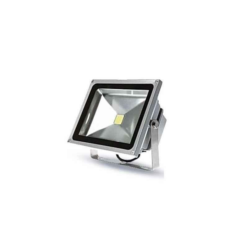 EGK 30W Waterproof LED Flood Light