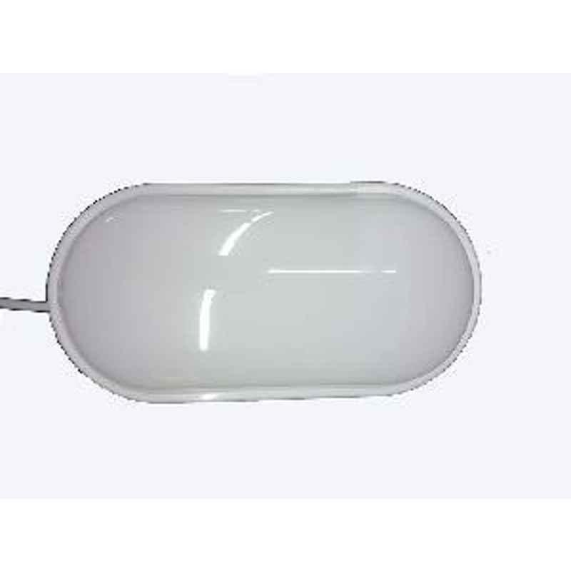 Bigapple 24W-BULKHEAD-OVAL LED Bulkhead Lamp white