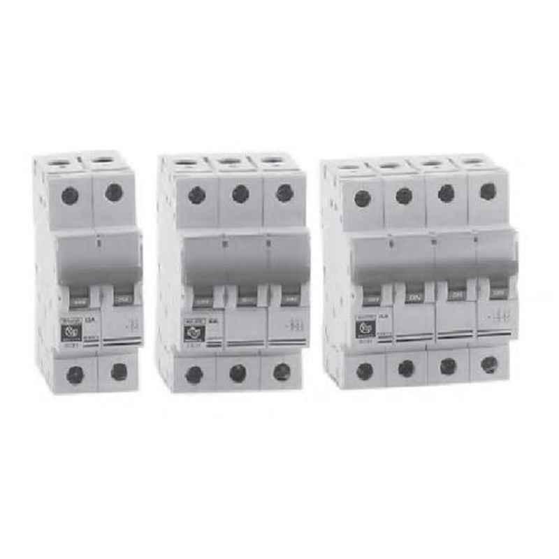 BCH 63A Double Pole Isolator, BCHISODP63