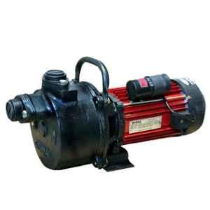 Oswal 1HP 2880rpm Domestic Shallow Well Pump, OMP-9(SH-WLL)(CI)