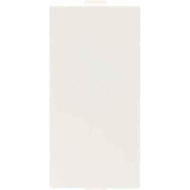 Indoasian 1M Blank Plate, 800051
