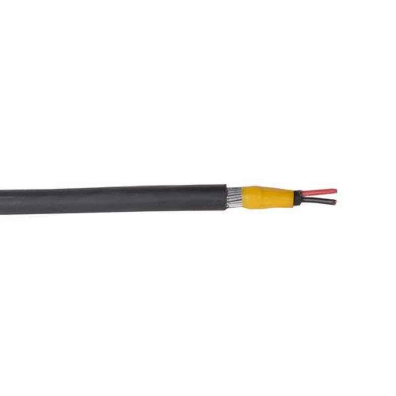 Polycab 6 Sqmm 2 Core Aluminium Armoured High Tension Cable, A2XFY, Length: 100 m