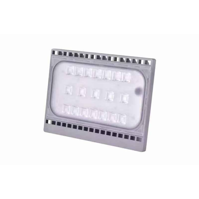 Bigapple 50W Cool White Taal Series LED Flood Light, 50WFLDCCW