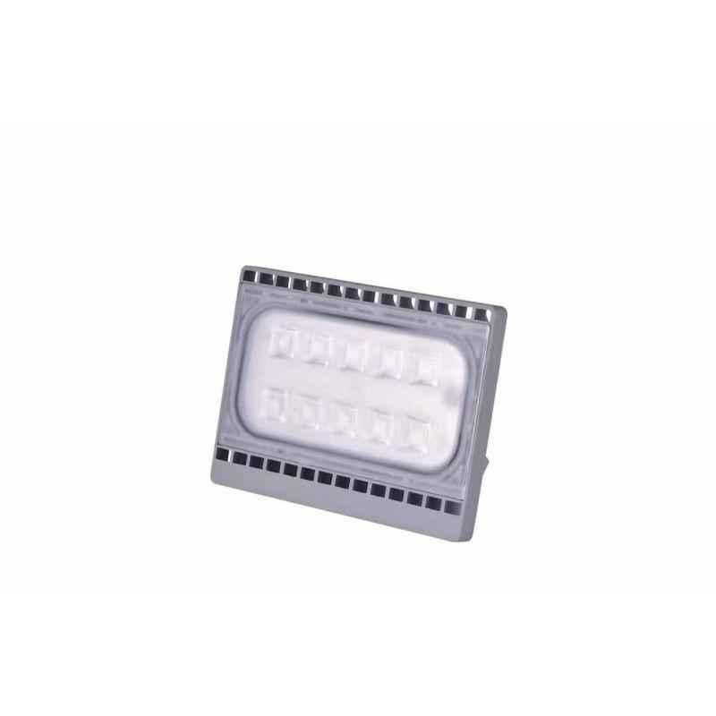 Bigapple 30W Cool White Taal Series LED Flood Light, 30WFLDCCW