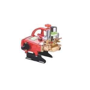 Ralli RTP-22A 2HP High Pressure Triplex Pump